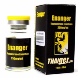 Enanger for BodyBuilding