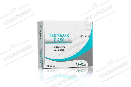 MAXLAB TESTOMAX E 250